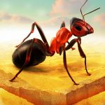 Little Ant Colony